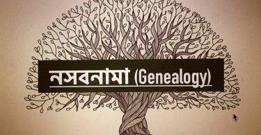 নসবনামা (Genealogy)